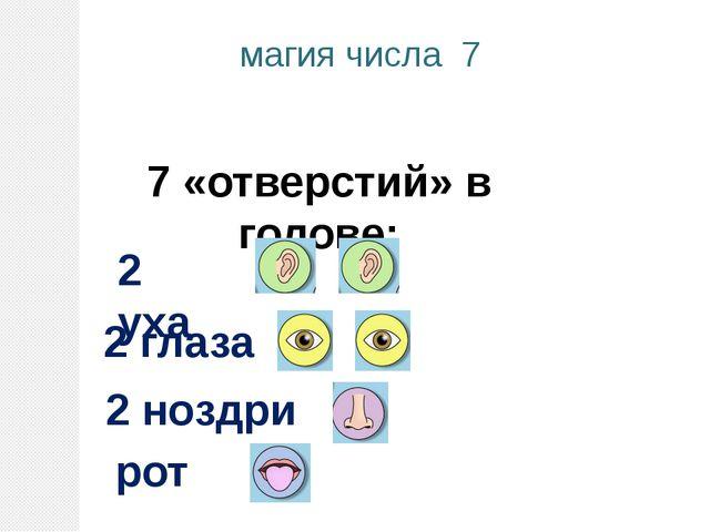 7 «отверстий» в голове: магия числа 7 рот 2 уха 2 глаза 2 ноздри