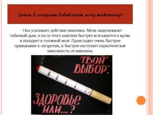 Зачем в сигареты добавляют мочу животных? Она усиливает действие никотина. Мо