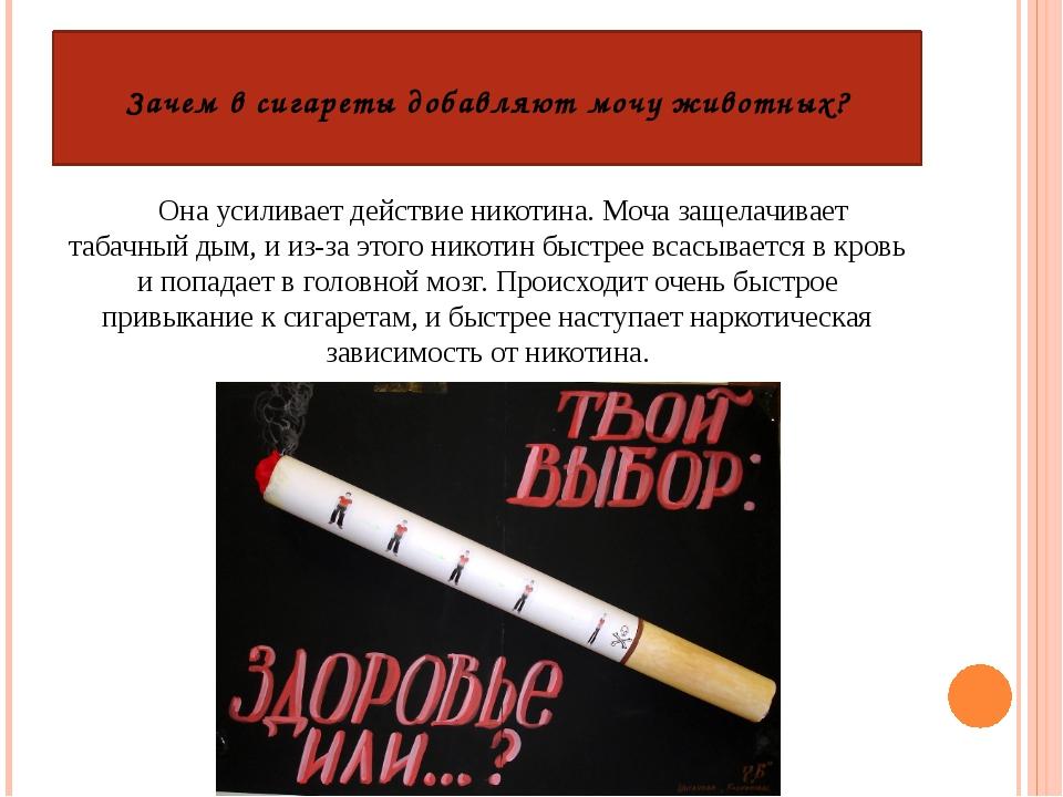 Социальная профилактика табакокурения
