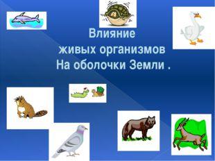 Влияние живых организмов На оболочки Земли .