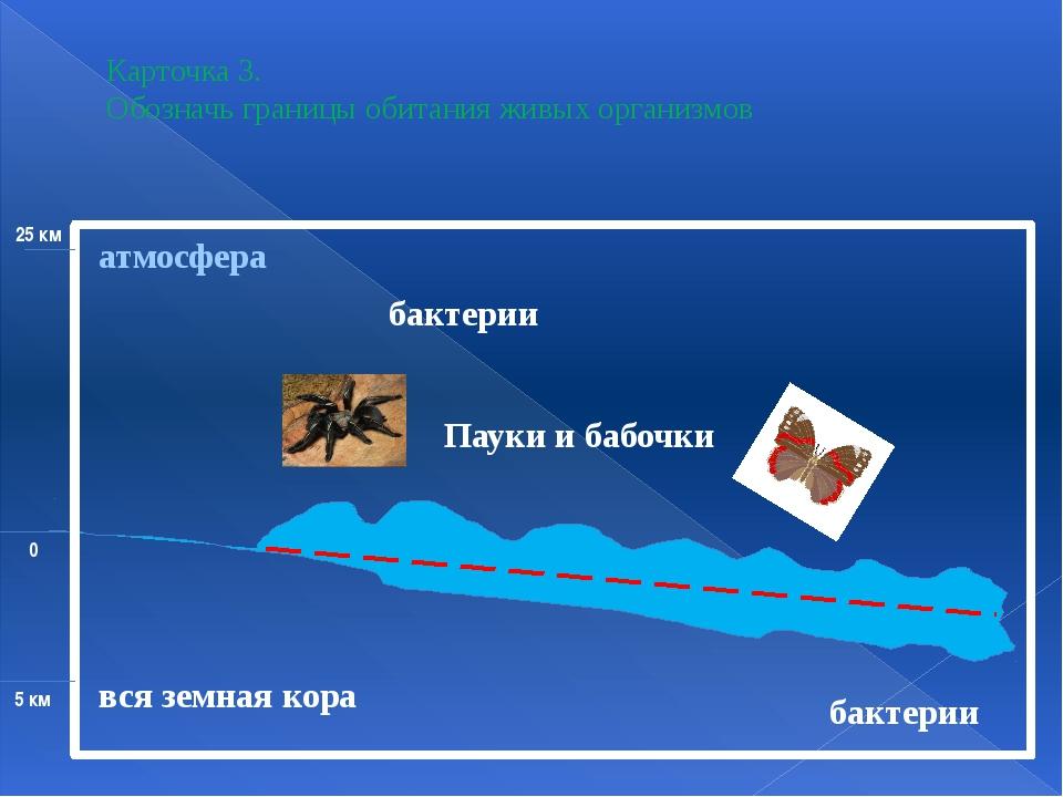 Карточка 3. Обозначь границы обитания живых организмов вся земная кора бакте...