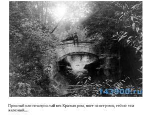 Прошлый или позапрошлый век Красная роза, мост на островок, сейчас там железн
