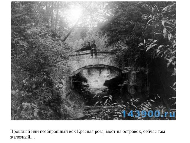 Прошлый или позапрошлый век Красная роза, мост на островок, сейчас там железн...
