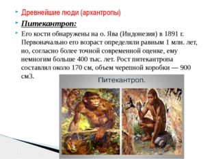 Древнейшие люди (архантропы) Питекантроп: Его кости обнаружены на о. Ява (Инд