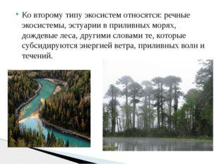 Ко второму типу экосистем относятся: речные экосистемы, эстуарии в приливных