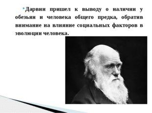 Дарвин пришел к выводу о наличии у обезьян и человека общего предка, обратив
