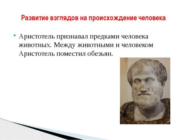 Аристотель признавал предками человека животных. Между животными и человеком...