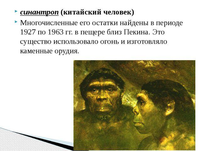 синантроп (китайский человек) Многочисленные его остатки найдены в периоде 19...