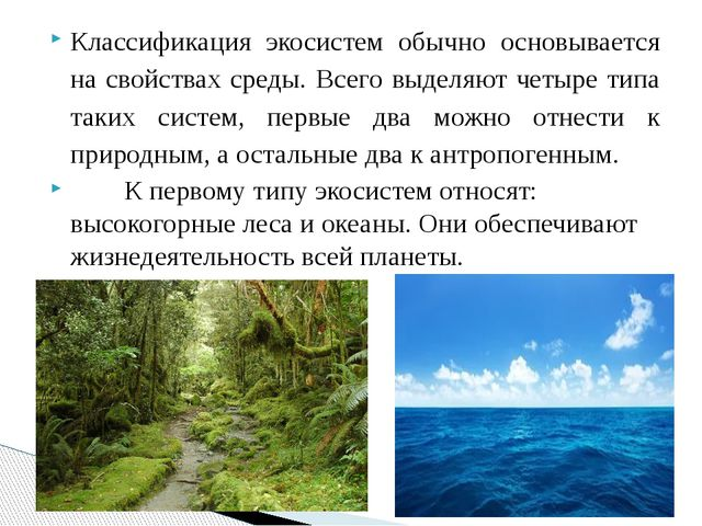 Классификация экосистем обычно основывается на свойствах среды. Всего выделяю...