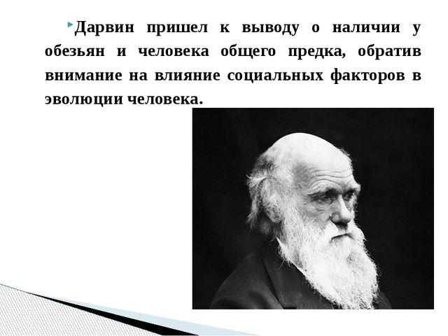 Дарвин пришел к выводу о наличии у обезьян и человека общего предка, обратив...