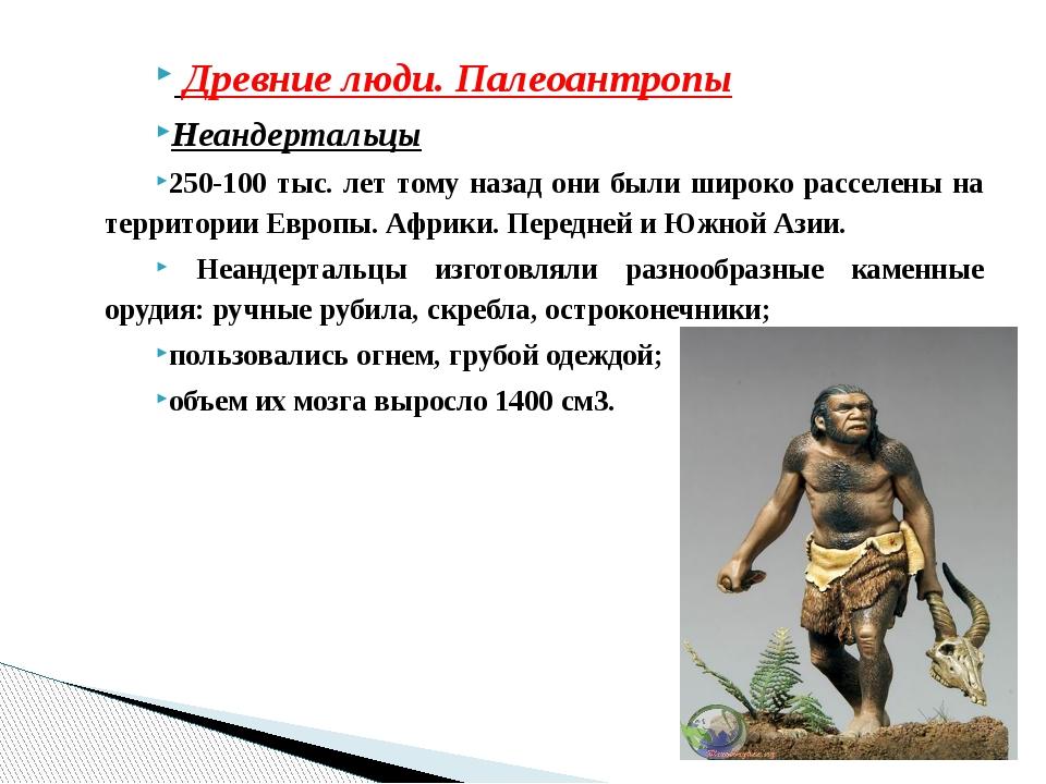 Древние люди. Палеоантропы Неандертальцы 250-100 тыс. лет тому назад они был...