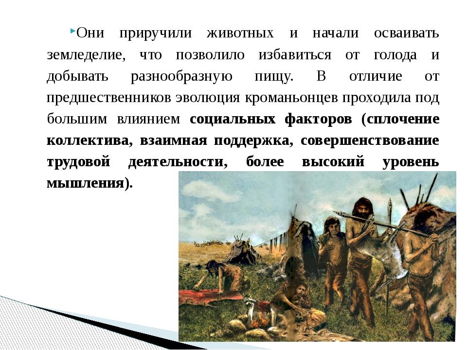 Они приручили животных и начали осваивать земледелие, что позволило избавитьс...