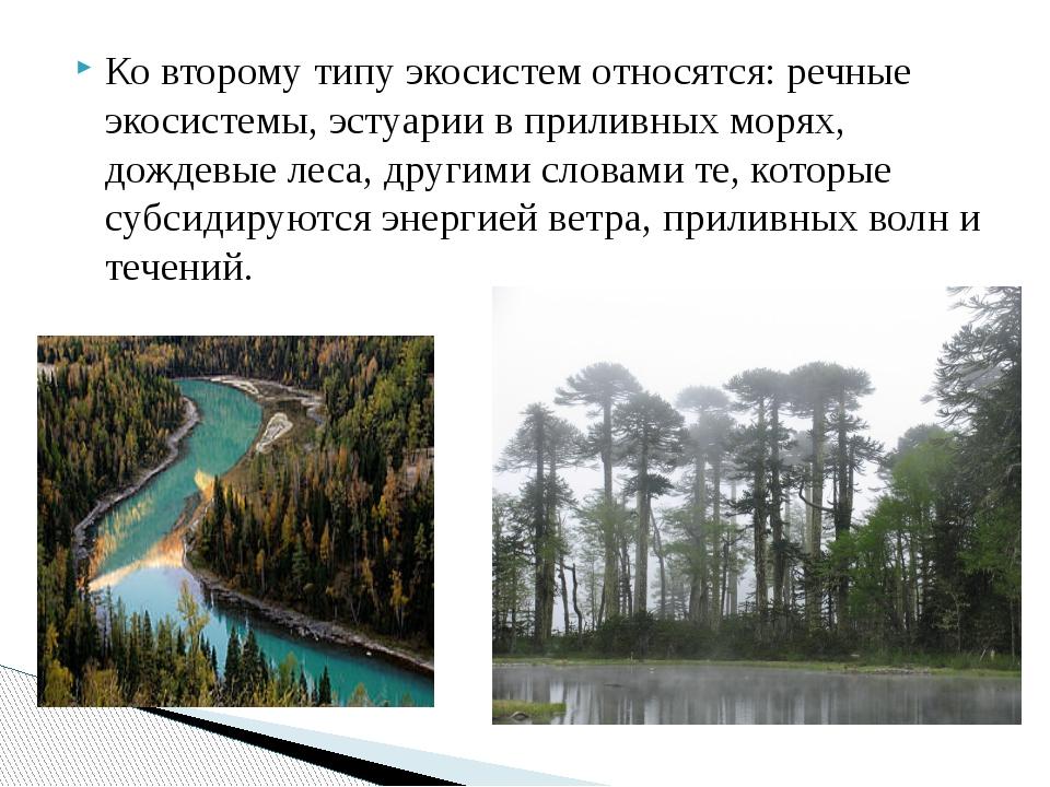 Ко второму типу экосистем относятся: речные экосистемы, эстуарии в приливных...