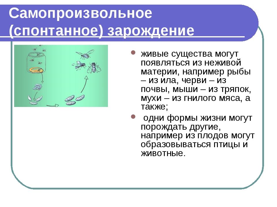 Самопроизвольное (спонтанное)зарождение живые существа могут появляться из н...
