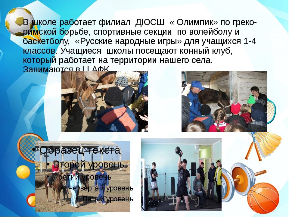 В школе работает филиал ДЮСШ « Олимпик» по греко- римской борьбе, спортивные...
