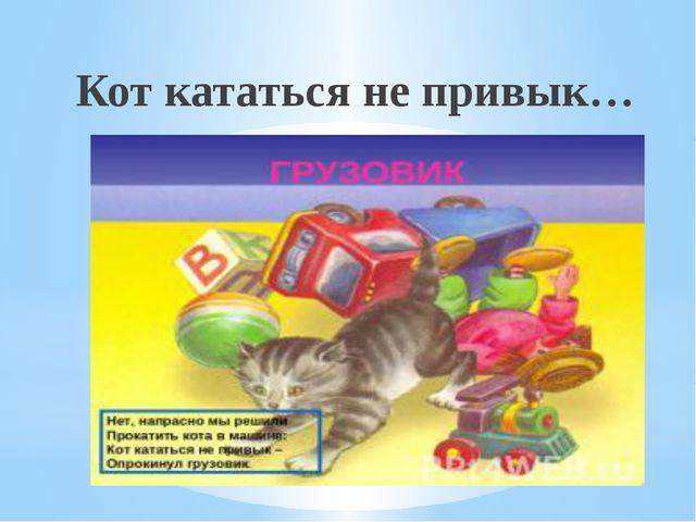 Кот кататься не привык…