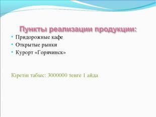 Придорожные кафе Открытые рынки Курорт «Горячинск» Кіретін табыс: 3000000 тен