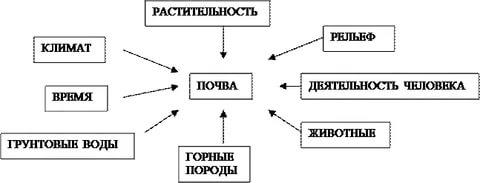 https://im2-tub-ua.yandex.net/i?id=0c8dffe28f0f37ec946bd793ab2acf0f&n=33&h=215&w=480