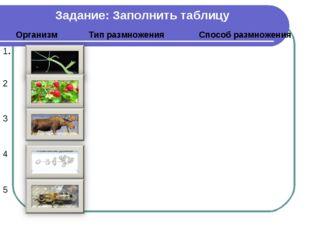 Задание: Заполнить таблицу ОрганизмТип размноженияСпособ размножения 1.