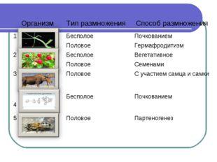ОрганизмТип размноженияСпособ размножения 1БесполоеПочкованием ПоловоеГе