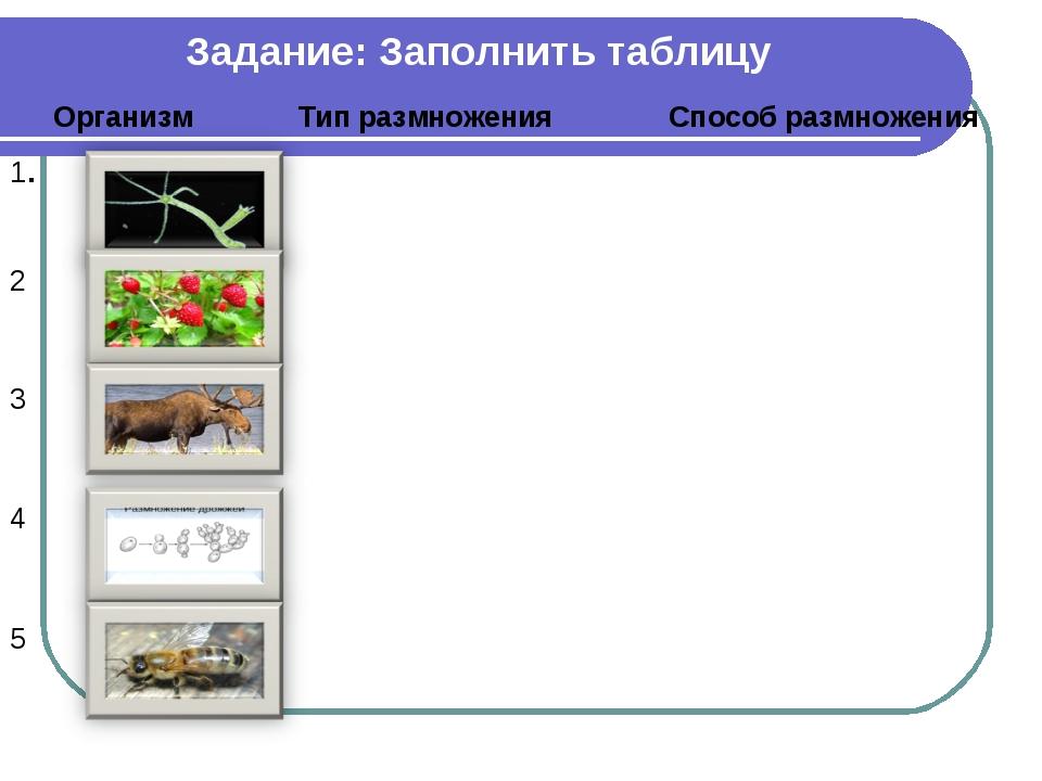 Задание: Заполнить таблицу ОрганизмТип размноженияСпособ размножения 1....