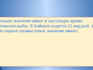 Большее значение имеет в настоящее время промысел рыбы. В Байкале водится 21