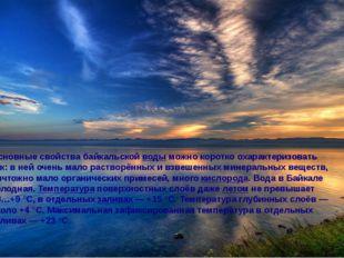 Основные свойства байкальской воды можно коротко охарактеризовать так: в ней