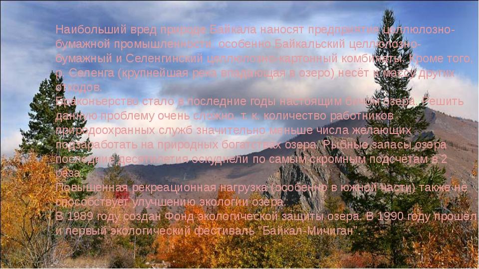 Наибольший вред природе Байкала наносят предприятия целлюлозно-бумажной пром...