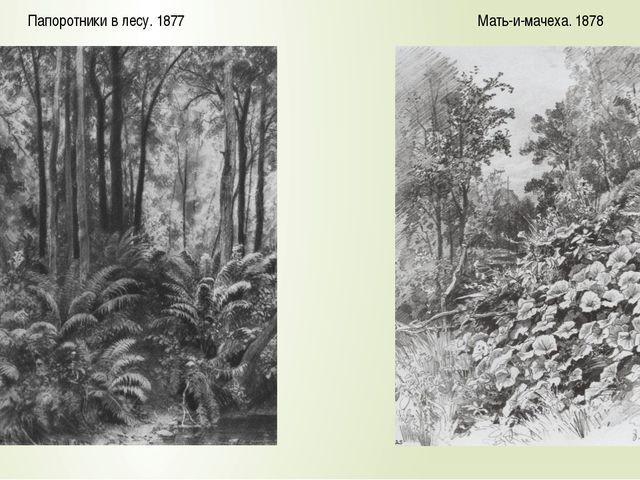 Мать-и-мачеха. 1878 Папоротники в лесу. 1877