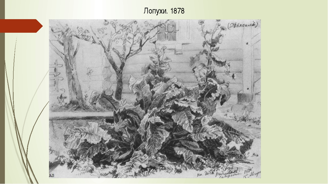 Лопухи. 1878