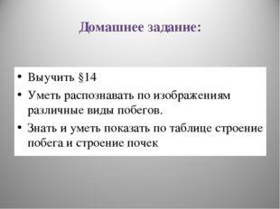 Домашнее задание: Выучить §14 Уметь распознавать по изображениям различные ви