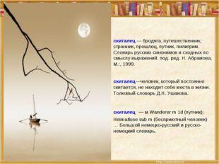 скиталец — бродяга, путешественник, странник, прошлец, путник, пилигрим. Слов