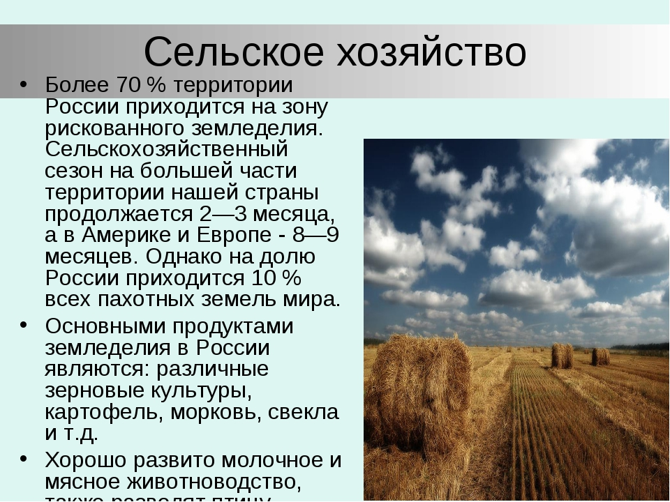 Сельское хозяйство Более 70 % территории России приходится на зону рискованно...