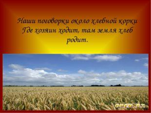 Наши поговорки около хлебной корки Где хозяин ходит, там земля хлеб родит.