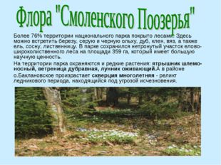 Более 76% территории национального парка покрыто лесами. Здесь можно встретит