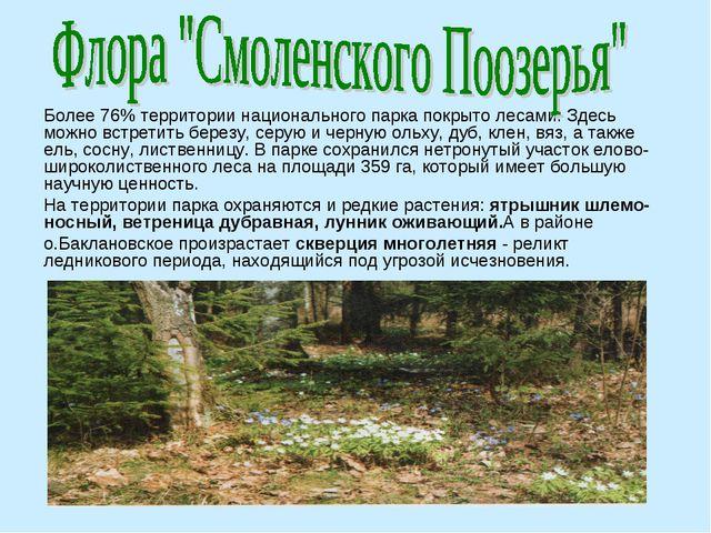 Более 76% территории национального парка покрыто лесами. Здесь можно встретит...