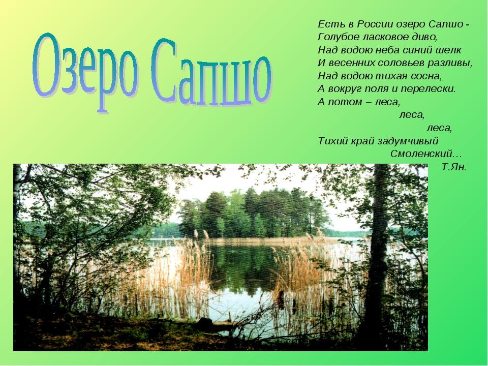Есть в России озеро Сапшо - Голубое ласковое диво, Над водою неба синий шелк...