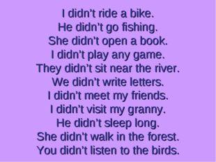 I didn't ride a bike. He didn't go fishing. She didn't open a book. I didn't