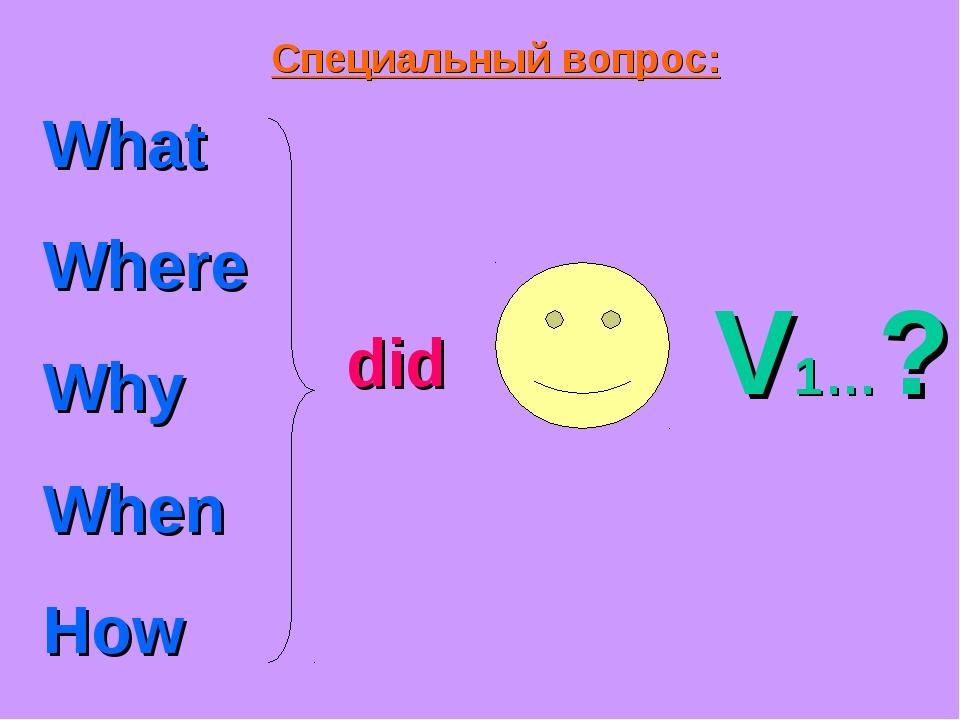 Специальный вопрос: What Where Why When How did V1…?