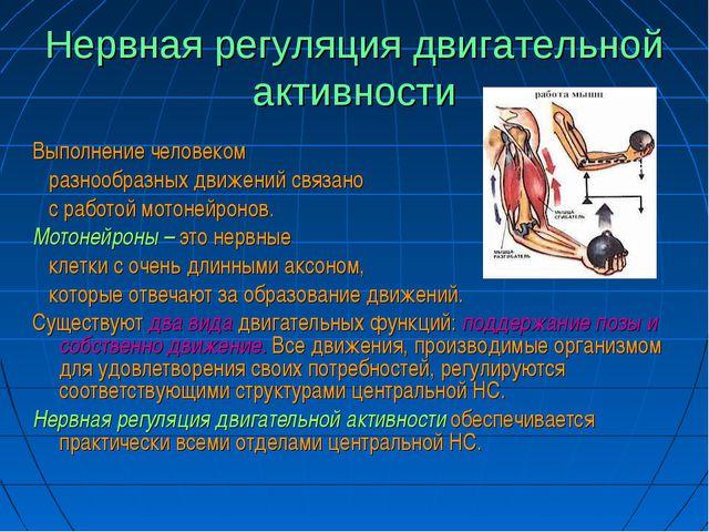 Нервная регуляция двигательной активности Выполнение человеком разнообразных...