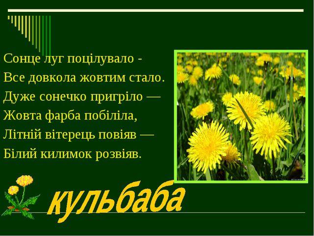 Сонце луг поцілувало - Все довкола жовтим стало. Дуже сонечко пригріло — Жовт...