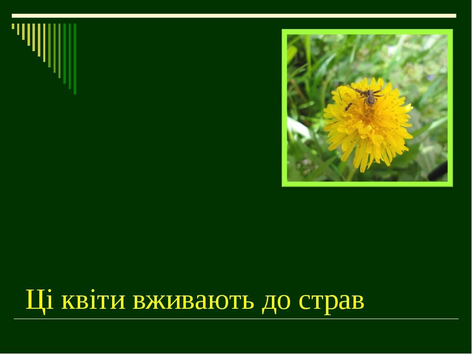 Ці квіти вживають до страв
