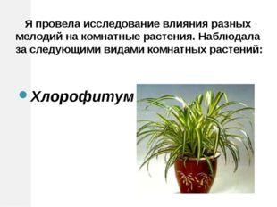 Я провела исследование влияния разных мелодий на комнатные растения. Наблюда