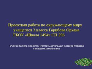 Руководитель проекта: учитель начальных классов Рябцева Светлана михайловна П