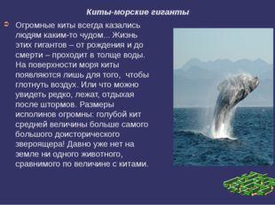 Киты-морские гиганты Огромные киты всегда казались людям каким-то чудом... Жи