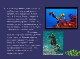 Своим подвижным,тоже совсем не рыбьим хвостом, конек может цепляться за водо