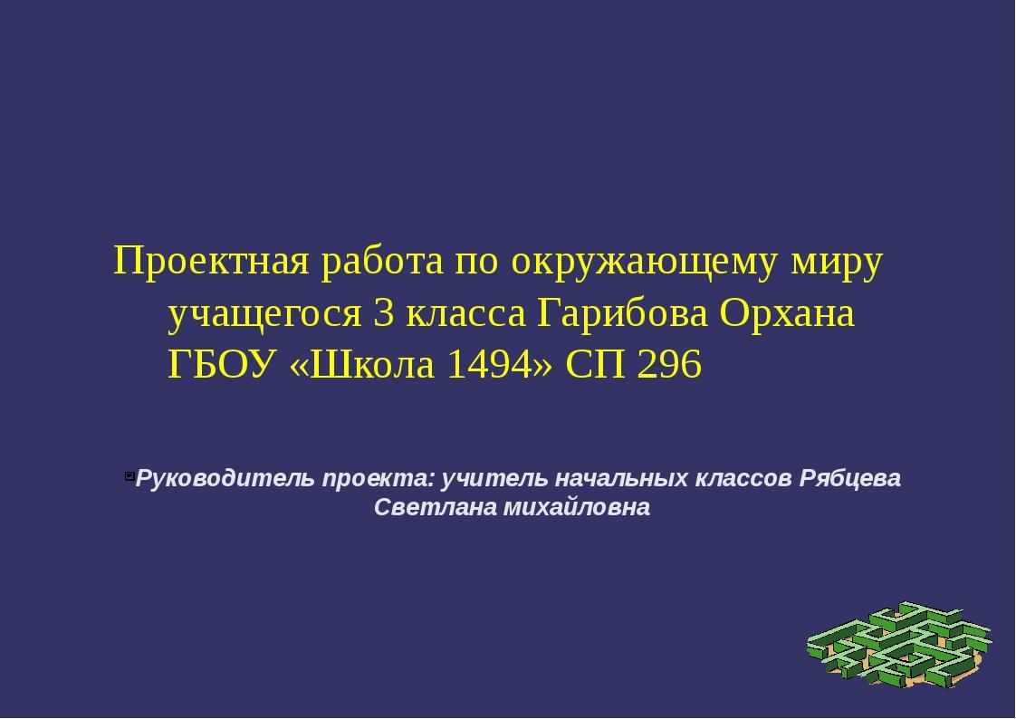 Руководитель проекта: учитель начальных классов Рябцева Светлана михайловна П...