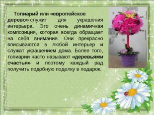 Топиарийили«европейское дерево»служит для украшения интерьера. Это очень д