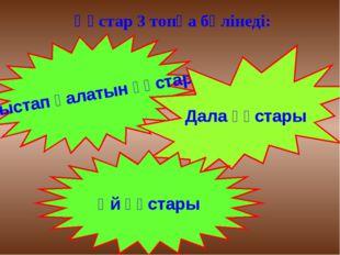 Құстар 3 топқа бөлінеді: Қыстап қалатын құстар Дала құстары Үй құстары