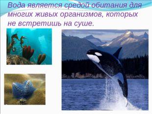 Вода является средой обитания для многих живых организмов, которых не встрети